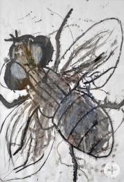 Schulkunstausstellung - Fliege